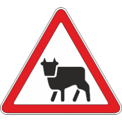 1.26 Перегон скота
